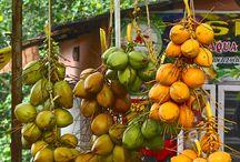 Fruits Meyve