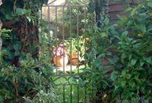 Doors, Mirrors and Garden Gate