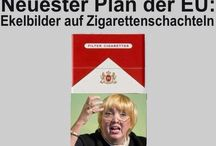 "Bundestags""Wahl"" 2017"