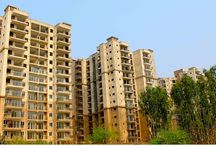 Real Estate Blogs / Get all updates of real estate market , read property related article & discuss about real estate .