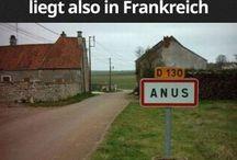 lustige Bilder