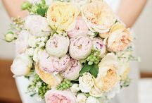 Dream wedding / Every girls dream to plan her dream wedding!