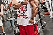 Ultimate Physiques