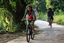 Hanoi Bicycle Tour