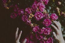★ Flowers ★