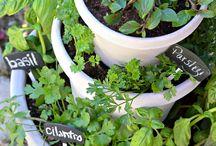 zahradnickovanie