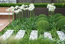 Great Planting Combinations