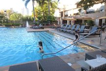 Australian hotel reviews / Are you searching for a great Australian hotel, but wonder what the rooms are like, or the restaurants, gym or pool? We cover it all in our hotel reviews!