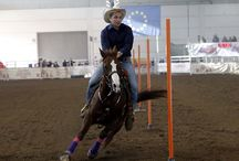 L'anima western di Fieracavalli 2015 / #western #westernshow #fieracavalli #fieracavalli 2015 #TeamPenning #BarrelRacing #Cutting #Pole Bending #cowboy #cowgirl  Photo Credits: Ennevi Foto - Veronafiere