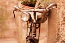 B i c y c l e s / bicycles