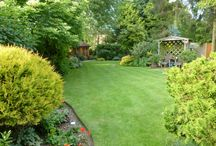 The Gardener Comes On a Tuesday / A collection of gardens that you'll fall in love with straight away