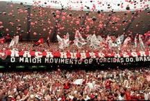 Flamengo / Culto ao mais querido.