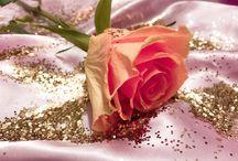 rosebudღ