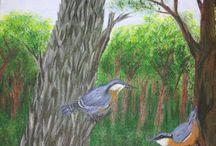 vogel schilderijen van joop spierlings.