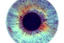 глаза зрачек