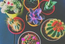 Plants are Life