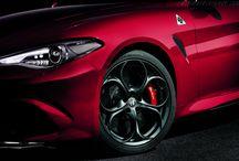 Alfa / Cars from Alfa Romeo