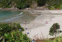 Waiheke / Beautiful Waiheke Island is one of the most popular spots in Auckland's Hauraki gulf.