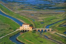 Visit / Great place to visit in Tuscany