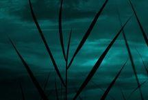 Night, Night-Views