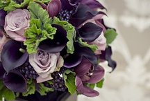 Purple and Green Wedding / Purple and Green Wedding Inspiration Board / by Wiregrass Weddings