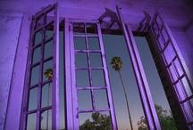 Purple-violeta-violet