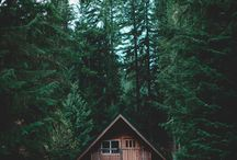 Cabins and Cottages / Get Cozy!
