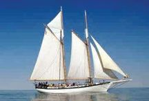Summer Fun by the Bay / Enjoy the Great Lakes Bay's attractions while the sun is shining =) / by Great Lakes Bay Region CVB
