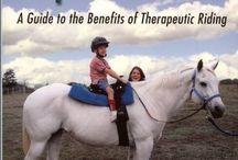 Future Therapeutic Riding Program