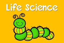 Life Science / Materials to Teach Life Science