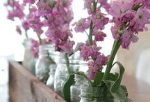 SEASON*Spring: decor / spring decor and easter decor and st Patrick's day