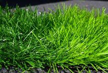 synthetic turf /