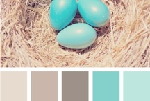 Colours / Colour combinations, paint swatches, mood board, inspiration, home decor, calm, relaxing, pastels