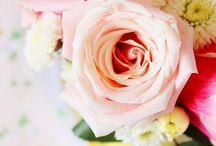 Floral / by Rachel kalynn