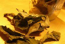 recette diy tisane maison / comment utiliser les plantes pour faire des tisanes .... recette bien faits ...