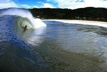 SURF SURF HaHaHa