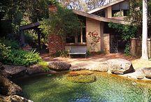 Teich Garten