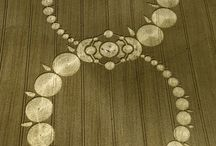Crop Circle Buissnes