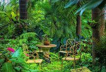 Hunte`s Garden, Barbados