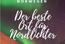 Reise Norden & Polarlichter