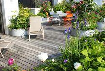 Toit terrasse jardin / Le toit terrasse sous toutes es coutures, végétalisé, étanchéité, aménagé... http://www.edifit.fr #toit #terrasse #jardin #plat #végétalisé #Aménagement #ToitTerrasse #ToitPlat #ToitTerrasseJardin #ToitPlatJardin #ToitPlatTerrasse #ToitPlatVégétalisé #ToitTerrasseAménagement #ToitTerrasseJardin #ToitTerrasseExtension #ToitTerrasseVégétalisé