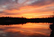 Natur Fotografie / Natur Fotografie