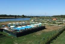 Tuscany Summer 2013