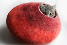 Red / by Karrisa Steiner