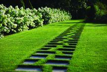 Дорожки и газон