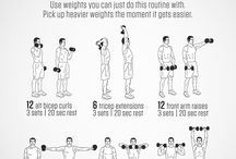 Bicep & Tricep Exercise