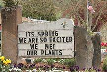 Gardening / by Kerri Rayford