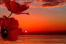 Sunrise, Sunset ... Moonset