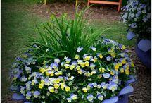 Garden tricks