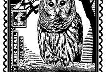 OWL POSTAGE STAMP / FRANCOBOLLI CIVETTA